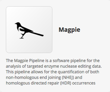 Introducing Magpie – a Multiplexed Automated Gene Editing Evaluation Pipeline
