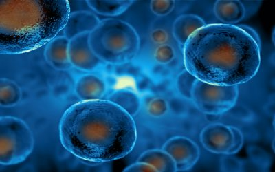 Synthetic Biology Data Management Solutions Enabling Early Gene Therapy Discovery
